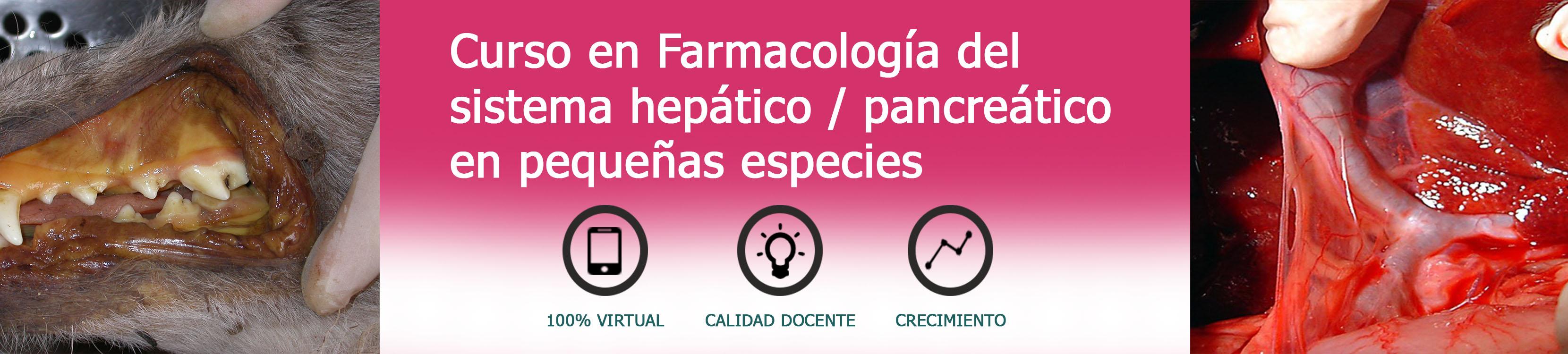 Diplomado en Farmacolofía Clínica de Grandes Especies