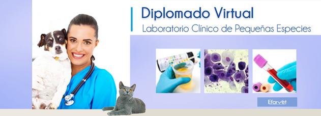 Diplomado en Farmacolofía Clínica de Pequeñas Especies